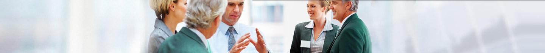 Fluke Infotech - Professional Services